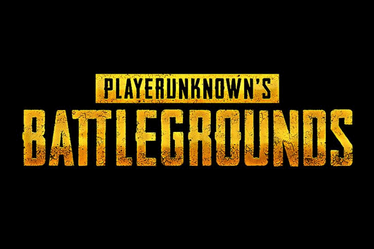 is pubg banned