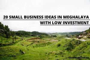 10 Small Business Ideas In Meghalaya With Low Investment In 2021