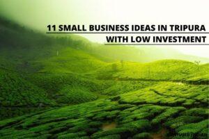 small business ideas in Tripura