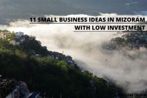 small business ideas in mizoram